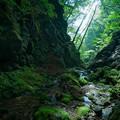 Photos: Rock Garden-光と影-