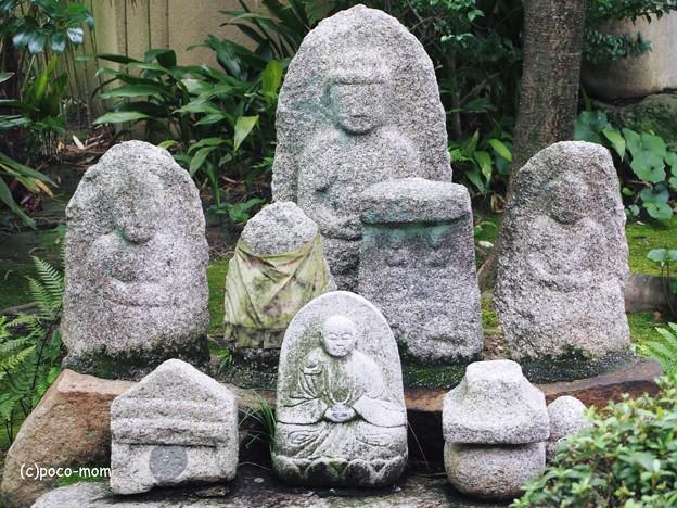 写真: 法観寺2014年07月21日_P7210123