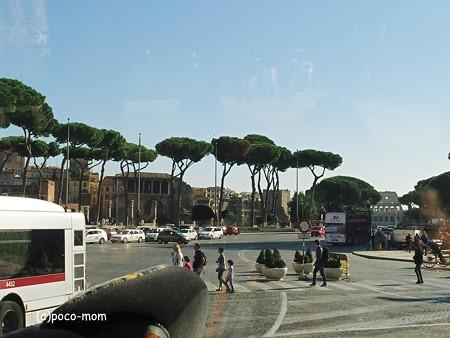 ローマの松2014年10月31日_PA310181