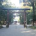 平成26年宮崎神宮大祓式1