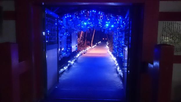 平成27年青島神社新春の禊 裸まいり前夜祭15