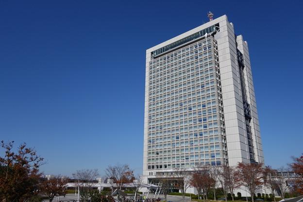 秋の茨城県庁舎