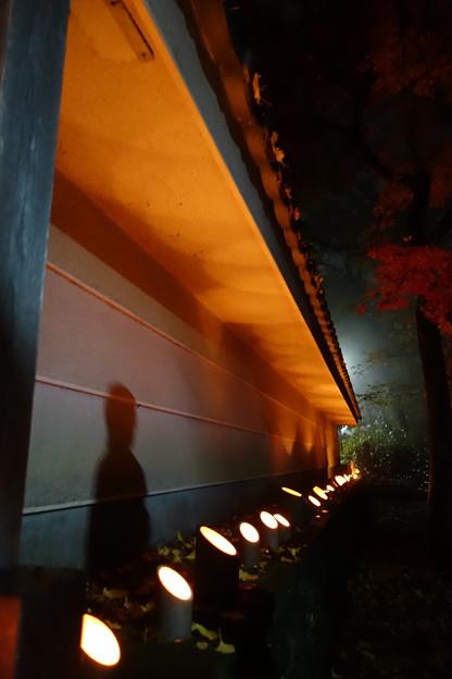 写真: お地蔵さまの影を映して...