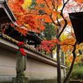 写真: お地蔵さまと紅葉