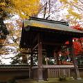写真: 徳満寺 鐘撞き堂