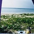 テントの中からの景色