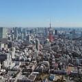 Photos: 東京タワー周辺