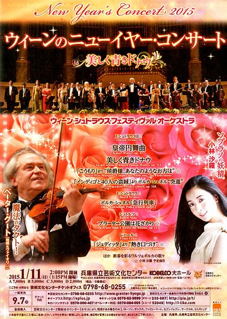 ウィーン ニューイヤー・コンサート 2015