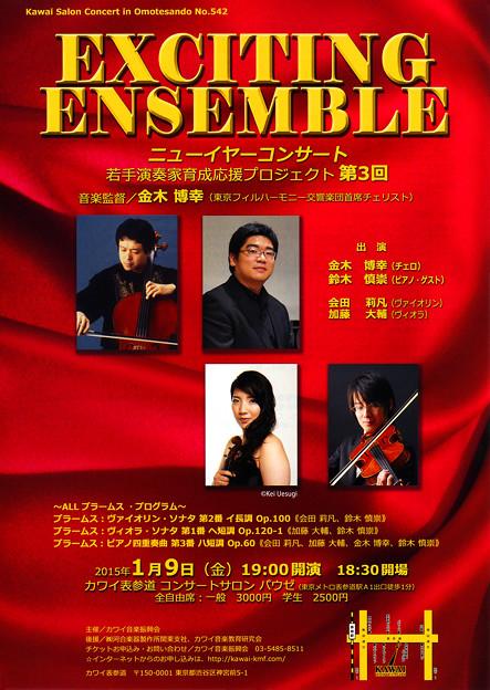 エキサイティング! ニューイヤーコンサート 2015
