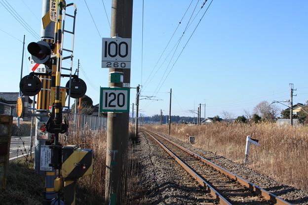 制限速度標識
