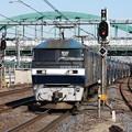 Photos: 5582レ EF210-117牽引 (3)