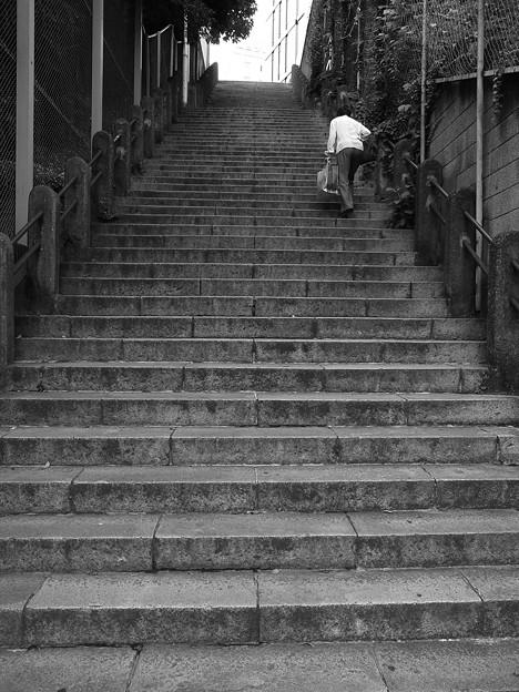 坂を見上げる