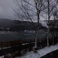 私たち長野県木白樺も冬は寒いねん、春になってほしいねん