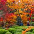 Photos: 湖東三山西明寺