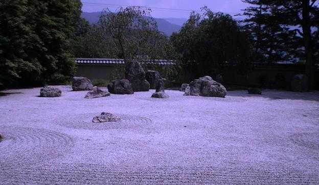 京都岩倉実相院