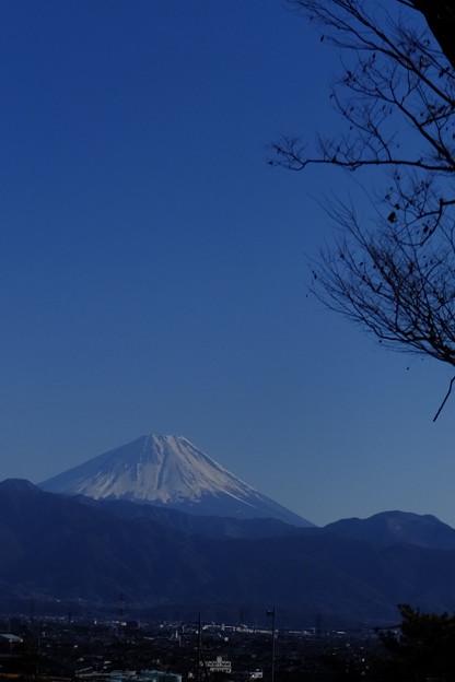 甲府市より眺めし富士山