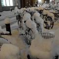 雪の自転車