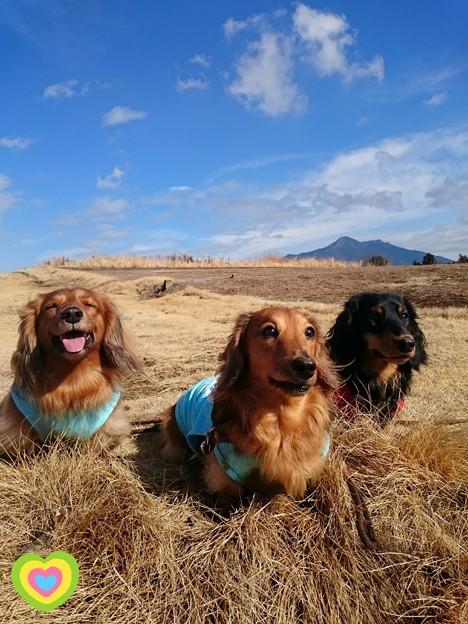 獣三兄弟と筑波山