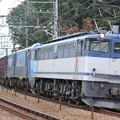 EF65 2076(EH200&コキ&タキ)