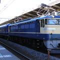 EF65 501(24系)