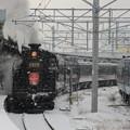 Photos: SLはこだてクリスマスファンタジー号3号 13