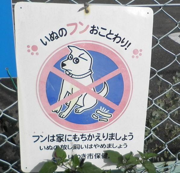 犬糞~いわき市