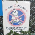 Photos: 犬糞~いわき市