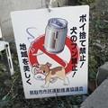 Photos: 犬糞~鳥取市2