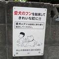 Photos: 犬糞~岡山市