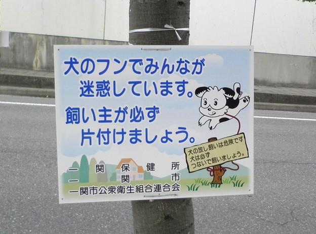 犬糞~一関市