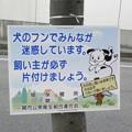 Photos: 犬糞~一関市