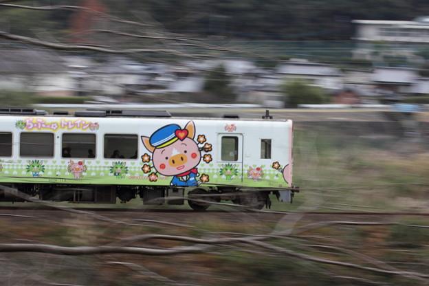おれんじ鉄道・・らぶ~トレイン