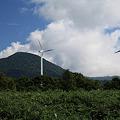 写真: 風力発電の期待