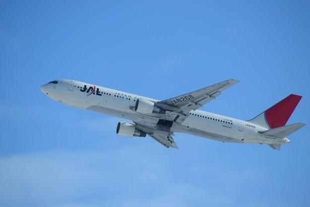 写真: Boeing 767-300 日本航空 JA8268