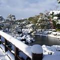 写真: 20141218白鳥庭園(3)