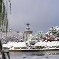 写真: 20141218鶴舞公園(3)
