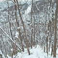 Photos: 初雪山登山
