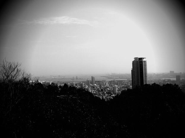 神戸市内を望む