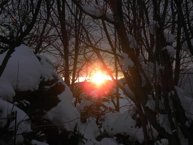 Photos: 雪国の夜明け