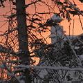 Photos: 吹雪の後の夜明け_3.23