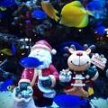 水槽の中のクリスマス