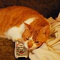 Photos: My Remote
