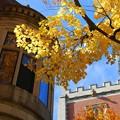 Photos: Bowdoin College 10-18-14