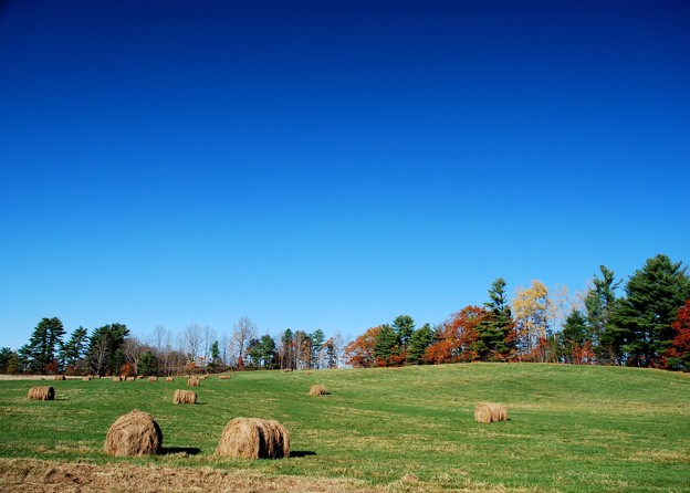The Scene with the Bales of Hay 10-25-14