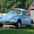 Sky Blue Bug 7-15-10