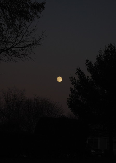 Photos: A Night Before Full Moon