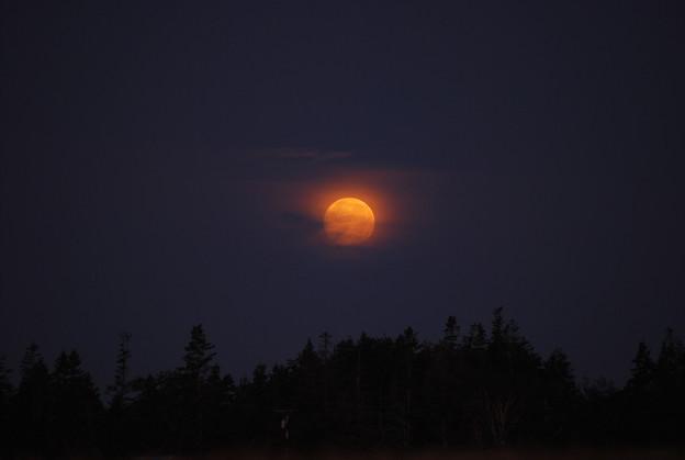 Photos: Setting Moon 8-13-11