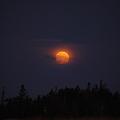 写真: Setting Moon 8-13-11