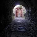 Photos: 橋とトンネル