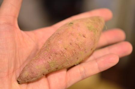大量安納芋 (2)